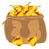Yellow pear in bag
