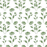 Seamless pattern with green Echinacea plant silhouette