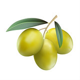 Green olives with leaves isolated on white background