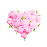 Bright peonies heart
