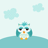 Baby owl boy background