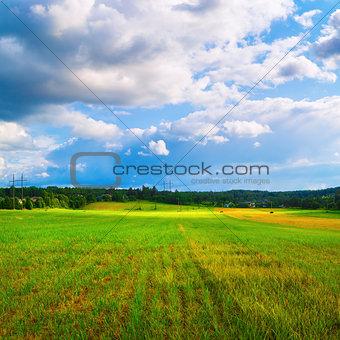 Bright rural landscape