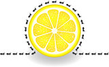 Ants around lemon slice