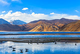 Pangong Lake in the morning