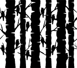 tree background with birds