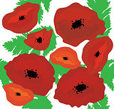 poppies seamless background