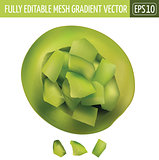 Green Melon Cut on White Background. Vector illustration
