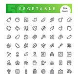 Vegetable Line Icons Set
