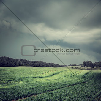Toned Dark Landscape with Field and Moody Sky
