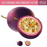 Passionfruit on white background. Vector illustration