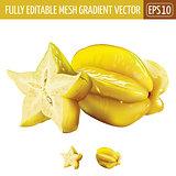 Carambola, starfruit on white background. Vector illustration