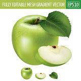 Green apple on white background. Vector illustration