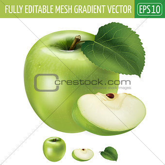 Green apple on white background. Vector illustration