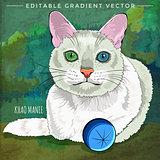 Khao Manee Cat Illustration