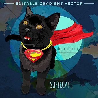 Cats superheroes. SuperCat