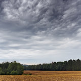 Summer landscape with dramatic cloudy sky