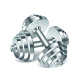 Metal realistic dumbbells