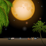 Tropical moonlight over sandy beach