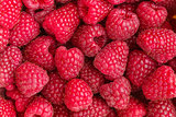 Fresh red raspberries