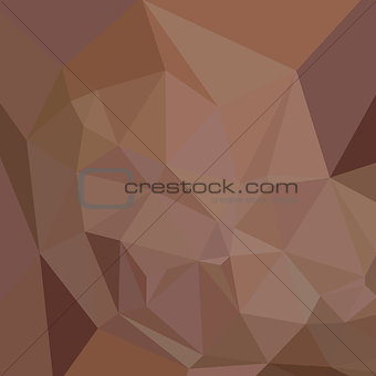 Caput Mortuum Brown Abstract Low Polygon Background