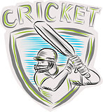 Cricket Player Batsman Batting Shield Etching