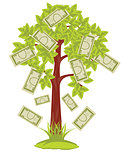 Tree with paper banknote