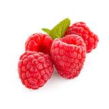 Raspberry fruit isolated