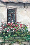 Window and flowers, watercolor