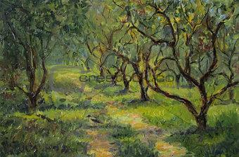 Apple trees, oil painting