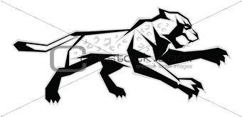 Black, white, grey jaguar