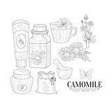 Camomile Cosmetics And Tea Hand Drawn Realistic Sketch