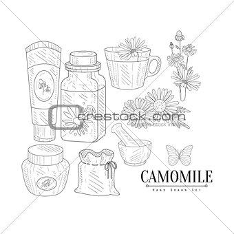 Camomile Cosmetics And Tea Hand Drawn Realistic Sketch