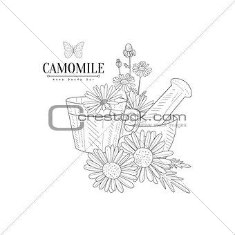 Camomile Tea, Pestle And Mortar Hand Drawn Realistic Sketch