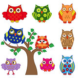 Set of ornamental colorful owls with tree