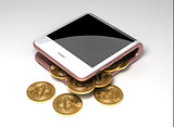 Concept Of Digital Wallet And Virtual Coins Bitcoins