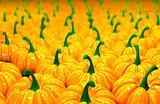 3d illustration background of pumpkins