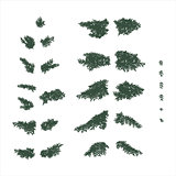 fir branches set in flat colors
