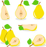 Pear, vector, yellow pears