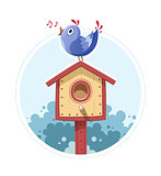 Bird sit and sing on nesting box