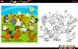 chicken characters coloring book