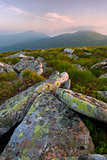 stones in the Carpathian Mountains at dawn