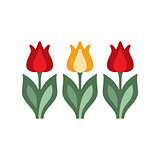 Holandaise Tulips Simplified Icon