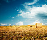 Beautiful Summer Farm Scenery with Haystack