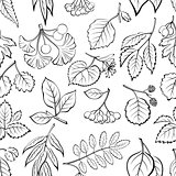 Leaves of Plants Pictogram, Seamless