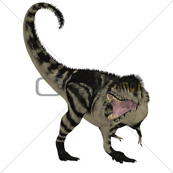 Black White T-Rex Dinosaur