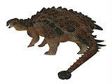 Pinacosaurus Dinosaur Tail