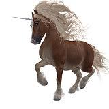 Shetland Unicorn