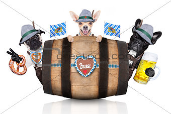 group of bavarian beer dogs
