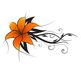 Vector orange lily