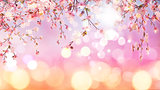3D cherry blossom on bokeh lights background